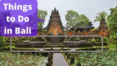 Photo of 10 Best Things to Do in Bali