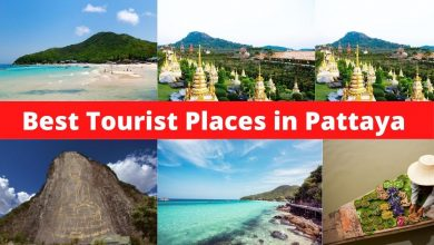 Photo of Those places in Pattaya are most worth visiting