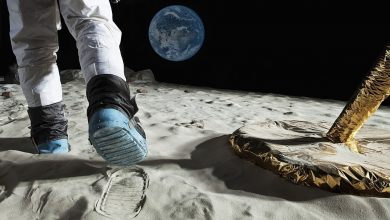Photo of Why can the lunar soil be brought back to the earth, but not Mars? Scientist: It's about human survival!